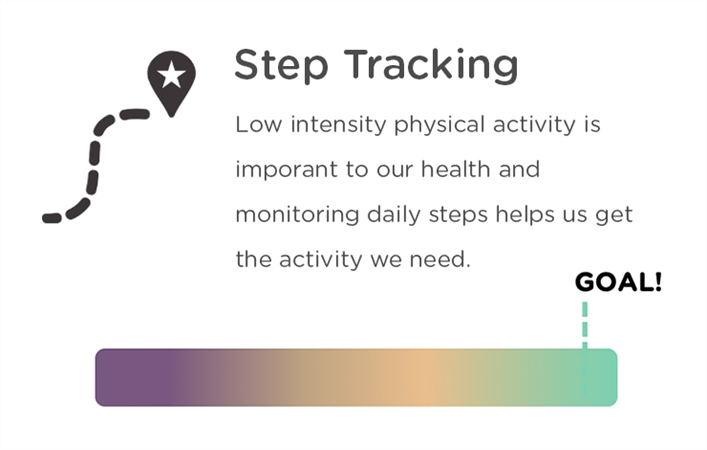 Step Tracking Tool