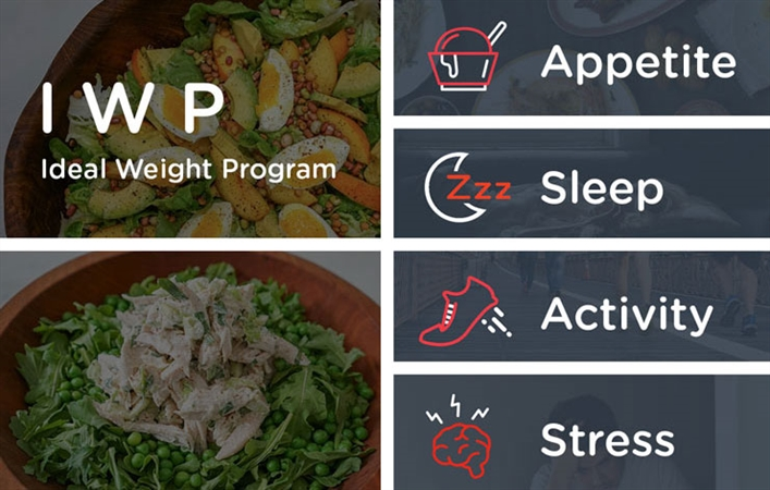 Ideal Weight Program Bundle