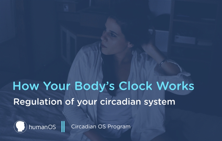How Your Body's Clock Works