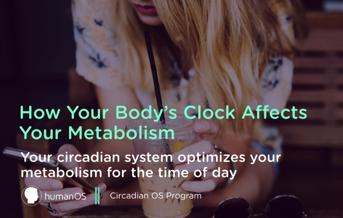 How Your Body's Clock Affects Your Metabolism