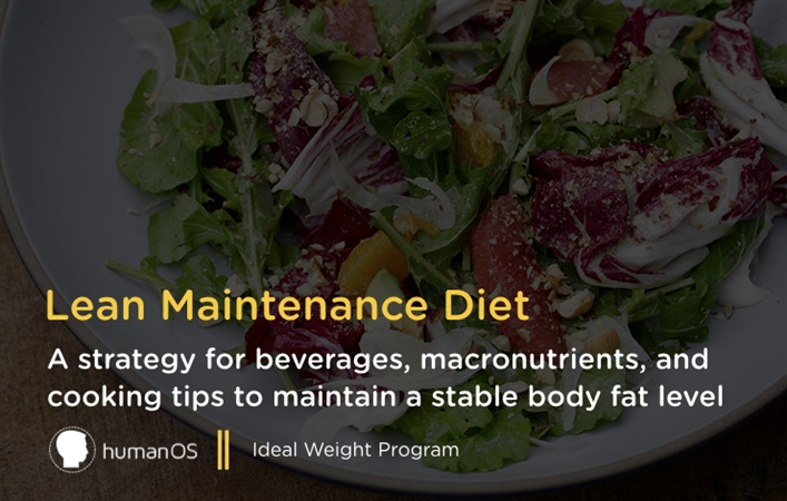 Lean Maintenance Diet
